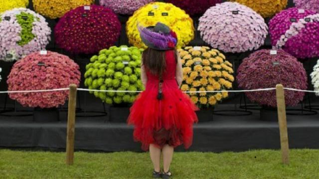 4. Chelsea Flower Show