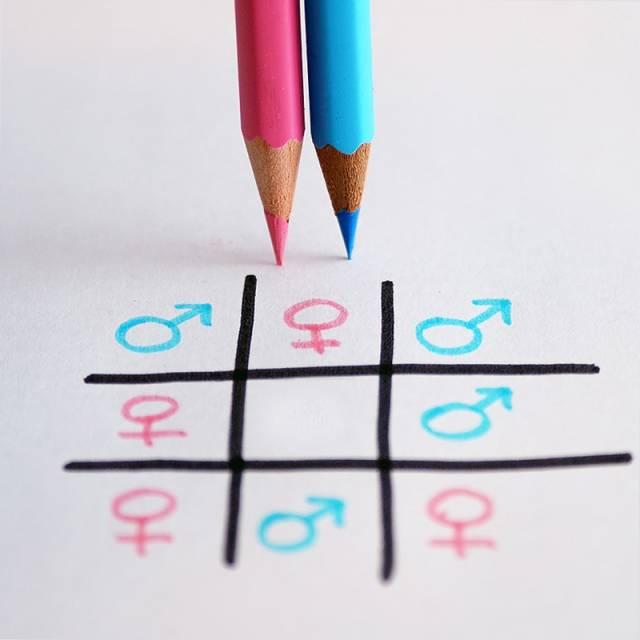 5. Kadın - Erkek Eşitliği