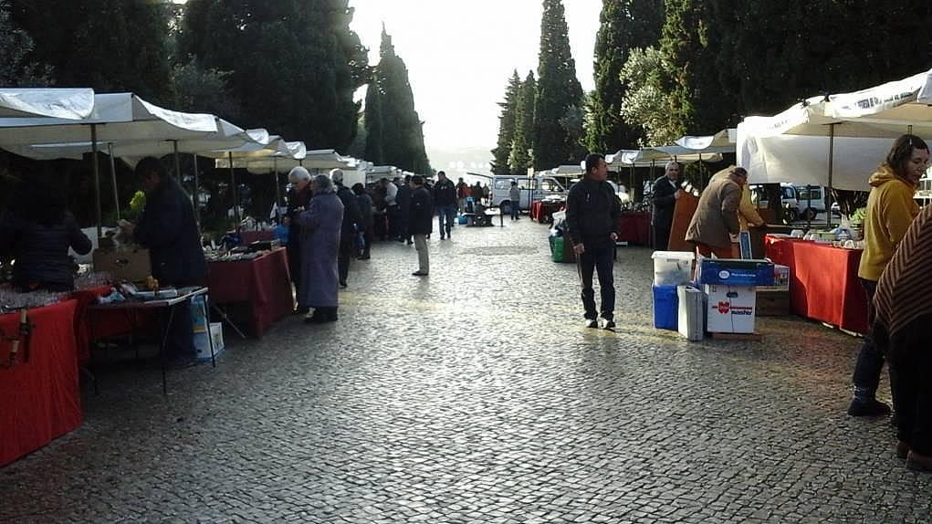 15. Lizbon'da pazar kuruldu dediler, geldik.