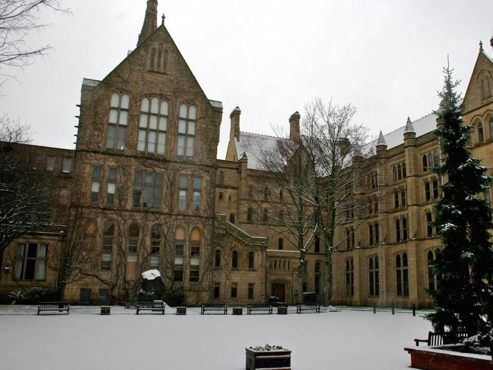 14. Alliance Manchester Business School / Birleşik Krallık