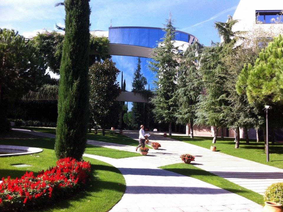 7. IESE Business School / İspanya