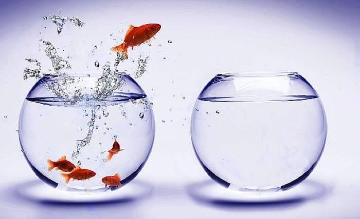 4. Farkındalıklı olma yolunda ilerlersiniz.