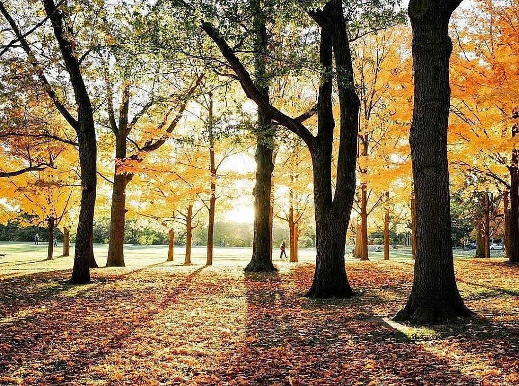 13. Dört mevsimi de doyasıya yaşayabileceğiniz bir ülkedir.