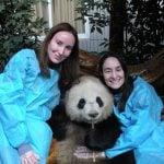 Çin'e Gittiğinizde Mutlaka Yapmanız Gereken 5 Harika Şey