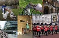 Londra'da Ücretsiz Yapılabilecek 101 Şey