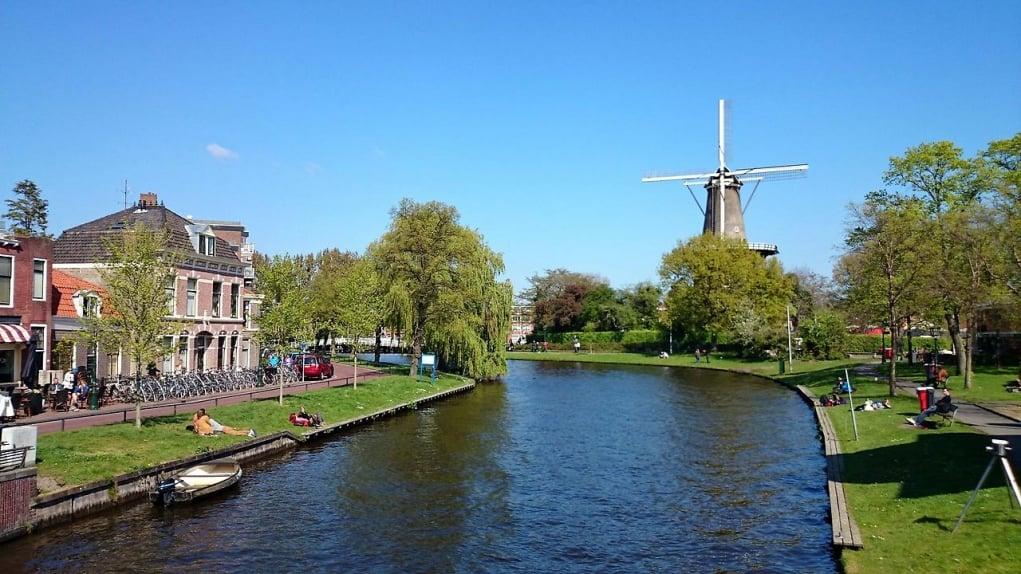 5. Hollanda