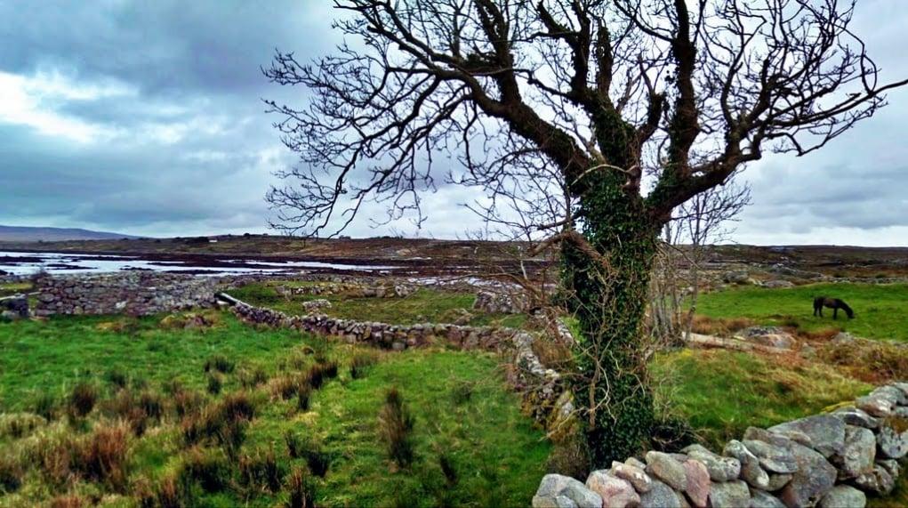 5. Muckanaghederdauhaulia, İrlanda'nın en uzun isme sahip yeridir.
