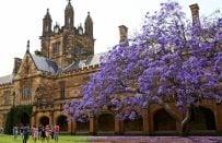 Avustralya'nın En İyi 10 Üniversitesi