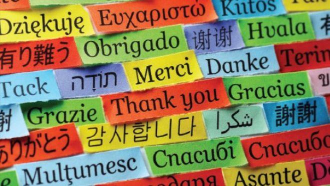 5. ''Yurtdışında eğitim çoğunlukla dil ana dalları içindir.''