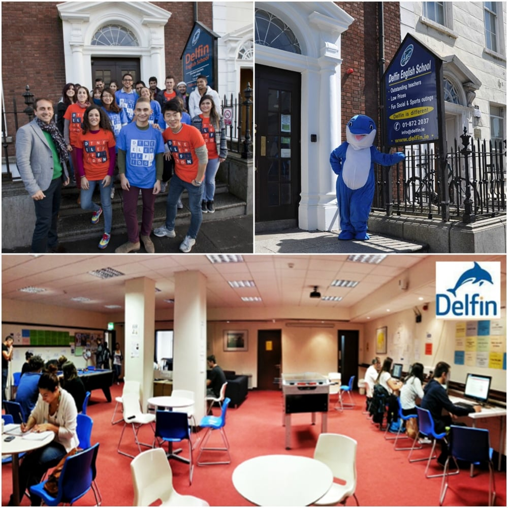3. Delfin English School