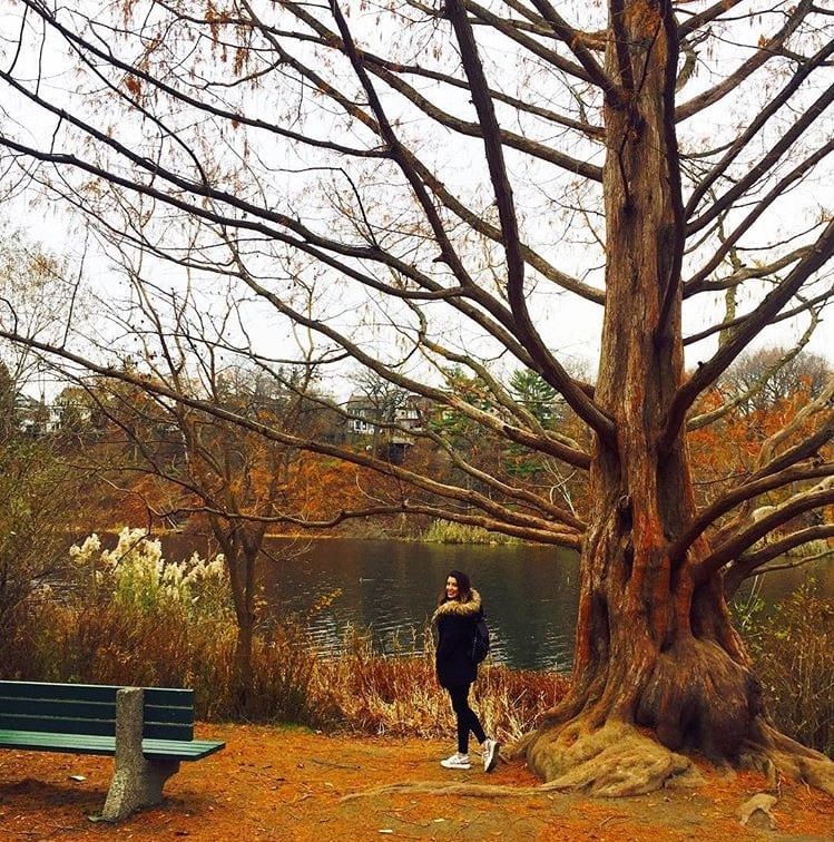 23. En sevdiğim sonbahar mekanı High Park