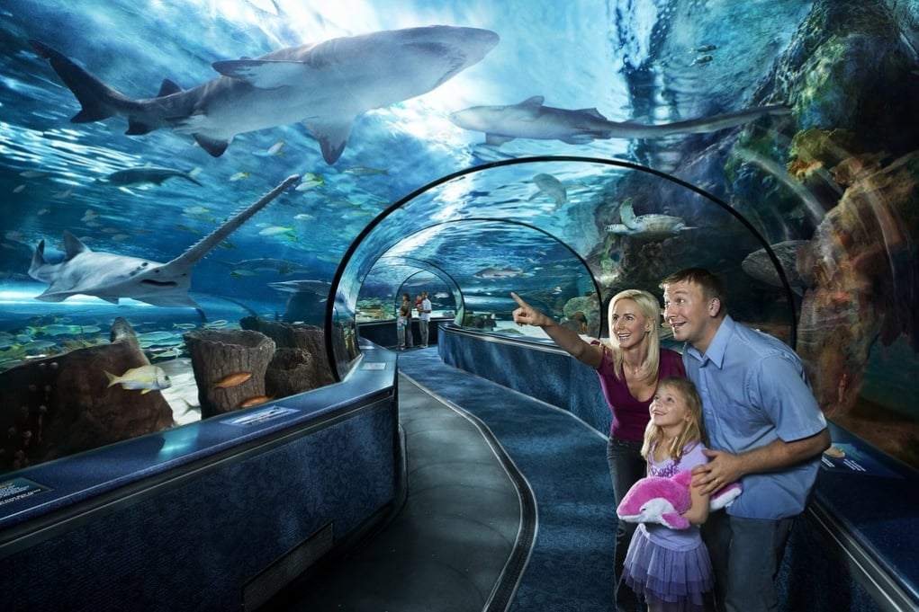 12. Ripley's Aquarium of Canada