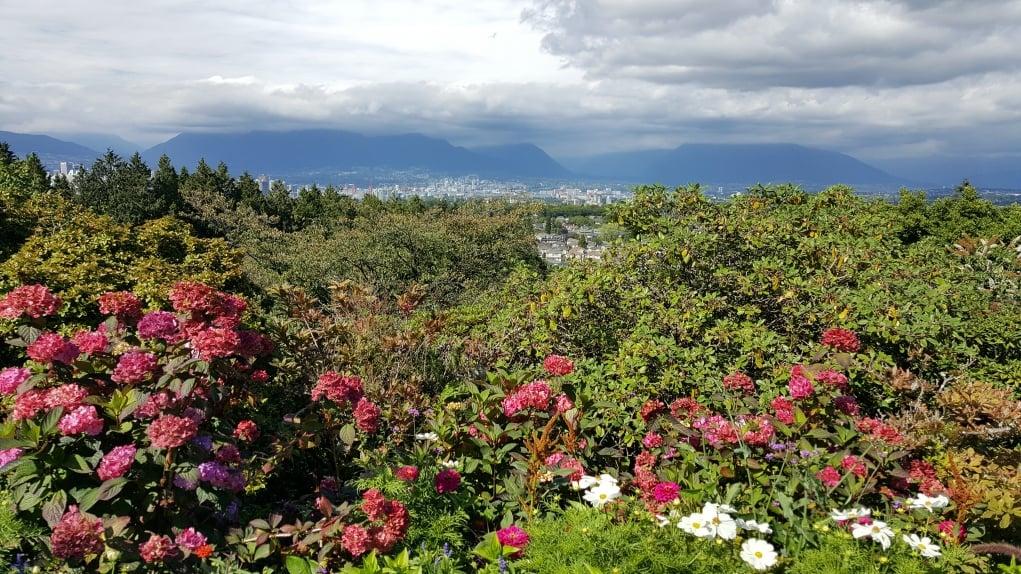 3. Vancouver'ın en sevdiğim özelliklerinden biri havasının çok temiz olması.