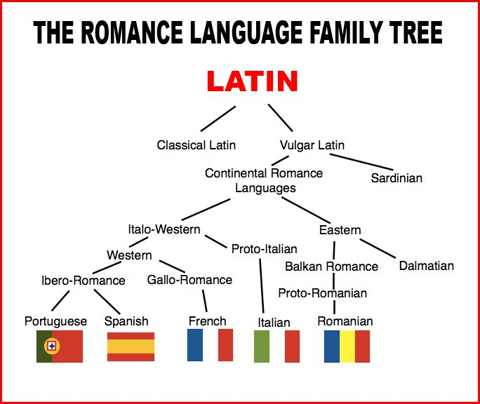4. İspanyolca öğrendikten sonra diğer latin dillerini öğrenmek daha kolaydır.