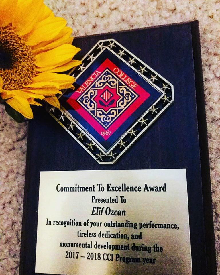 9. Amerika'da güzel bir ödülle başarımı taçlandırarak mezun oldum.