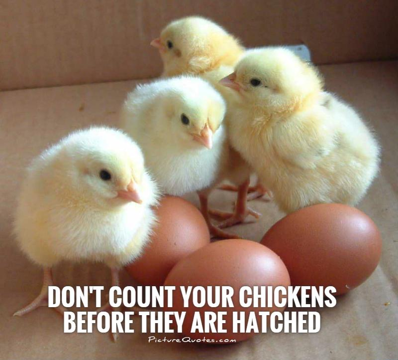 "1. ""Don't count your chickens before they hatch."""