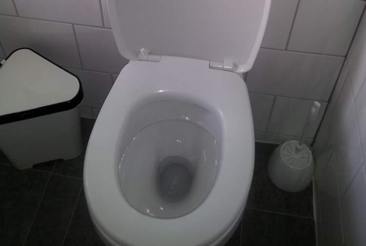9. Taharet musluğuna alternatif çözüm bulmaya hazır olun.