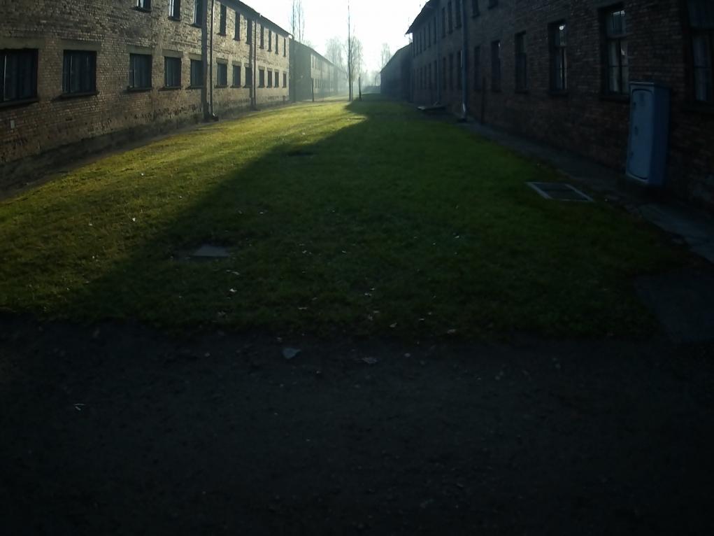 6. Auschwitz Kampı kurulduktan sonra neler oldu?
