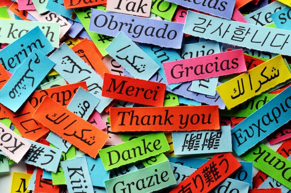 8. Almanca'da ''teşekkür etmek'', ''istememek'' anlamı taşıyor.
