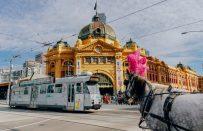 Melbourne Dil Okulları Açılıyor